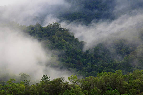 Far North Queensland Wall Art - Photograph - Thick Cloud Covers The Tropical by Paul Dymond