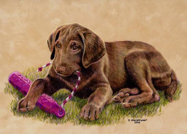 Pup Drawing - Thinkin' Pink by Debbie Stonebraker