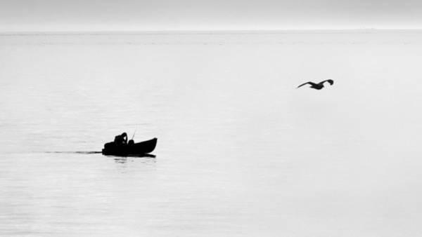 Photograph - Thinking by Patrick M Lynch