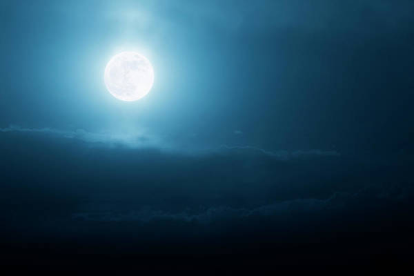 Wall Art - Photograph - This Bright Shining Super Moon by Ricardoreitmeyer