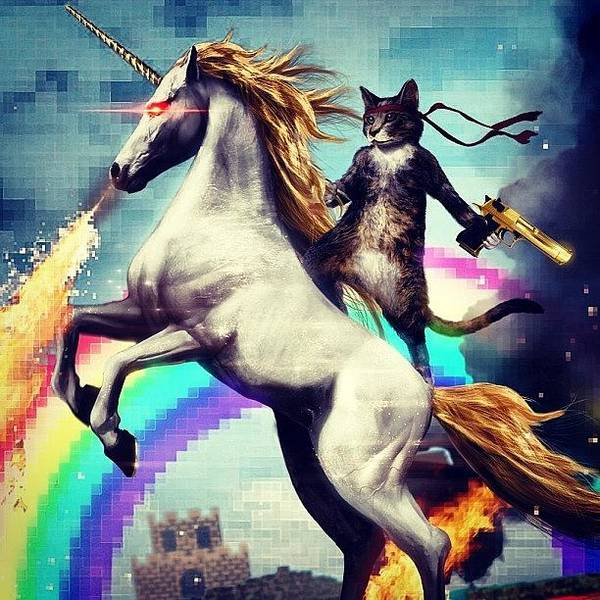 Guns Photograph - This Is.... Awesome! #cat #unicorn by Braden Chaufty