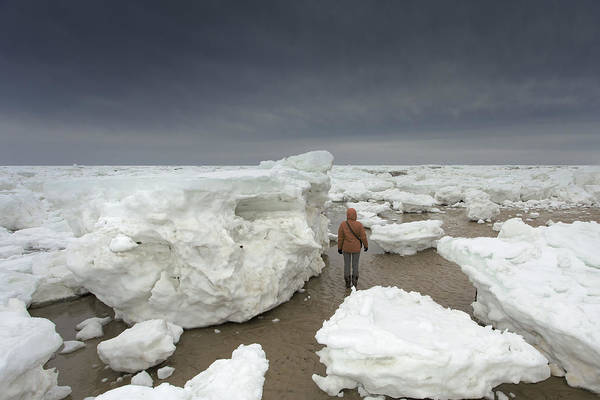 Wall Art - Photograph - This Is How Thick Ice In Wellfleet Cape Cod by Dapixara