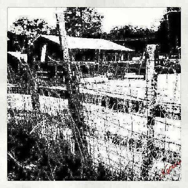 Wall Art - Photograph - This Photo Is For Sale In My by Katrise Fraund