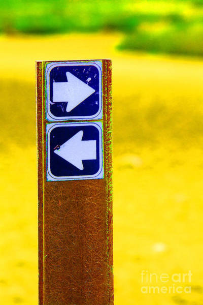 Photograph - This Way by Jim West