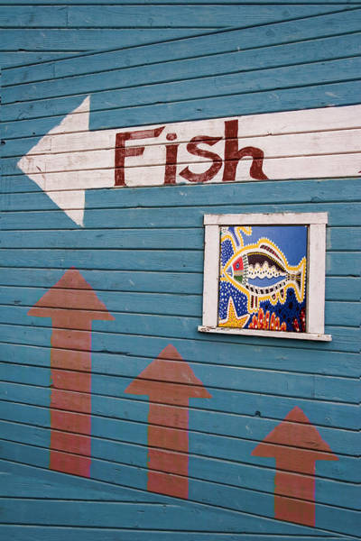 Wall Art - Photograph - This Way To The Fish by Carol Leigh