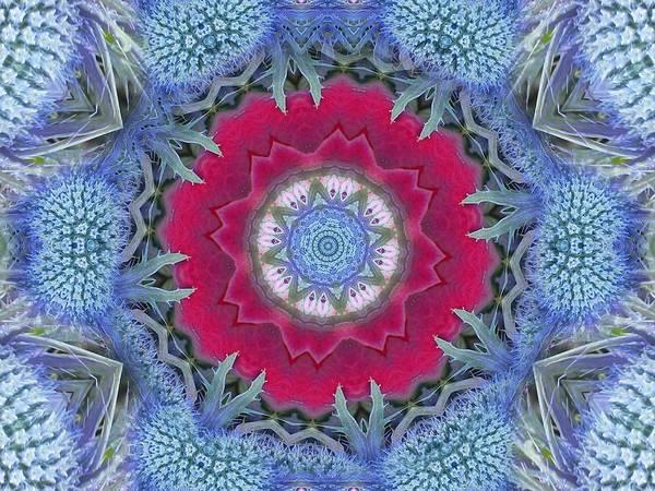 Digital Art - Thistle Portal Mandala by Diane Lynn Hix
