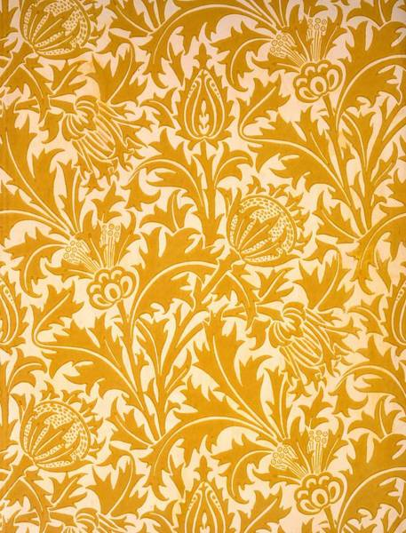 William Drawing - Thistle Wallpaper Design, Late 19th by William Morris