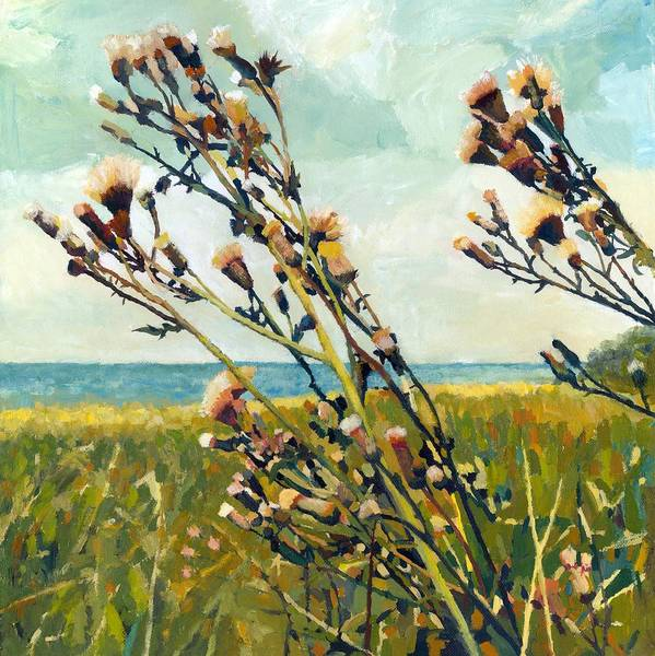 Painting - Thistles On The Beach - Oil by Michelle Calkins