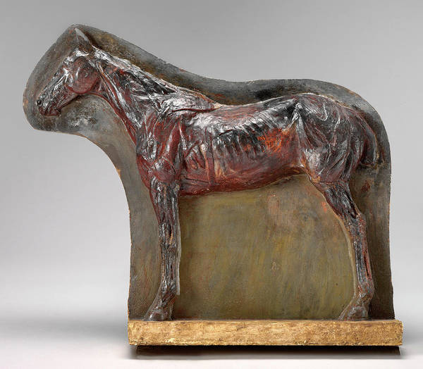Wall Art - Painting - Thomas Eakins, Ecorché Relief Of A Horse Josephine by Quint Lox