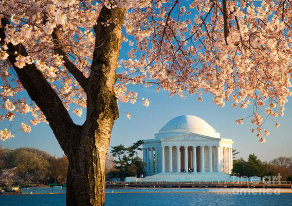 National Mall Wall Art - Photograph - Thomas Jefferson Memorial by Inge Johnsson