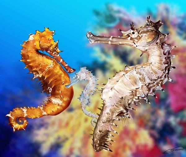 Thorny Seahorse Art Print by Owen Bell