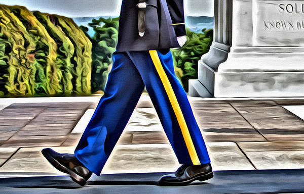 Photograph - Those Military Legs by Alice Gipson