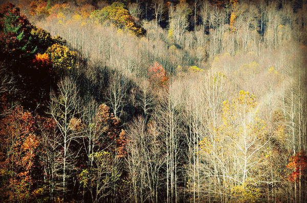 Photograph - Those West Virginia Hills by Paulette B Wright