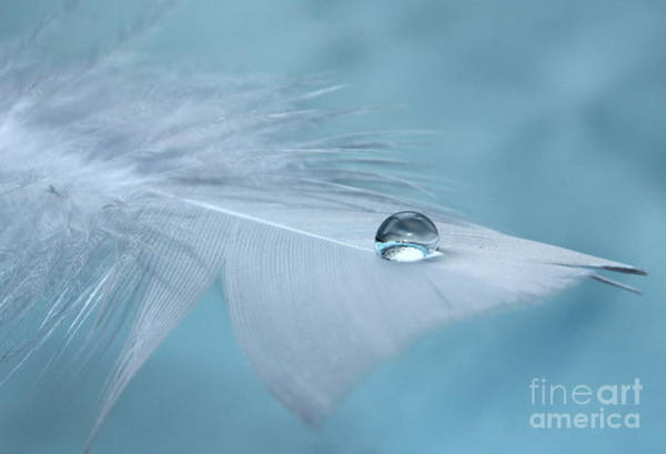 Exquisite Photograph - Thoughts Of Yesterday by Krissy Katsimbras