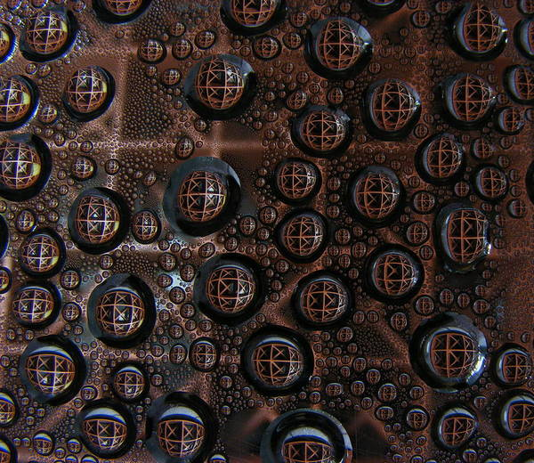 Photograph - Thoughts On Condensation by Salvadore Delvisco