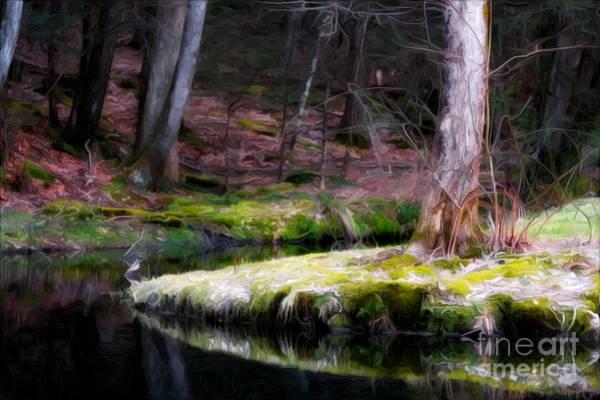 Photograph - Thoughts by Rick Kuperberg Sr