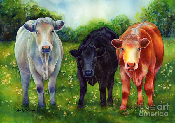 Painting - Three Amigos by Hailey E Herrera