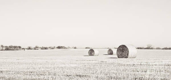 Photograph - Three Bales Black And White by Pam  Holdsworth