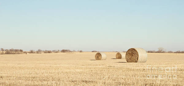 Photograph - Three Bales Color by Pam  Holdsworth