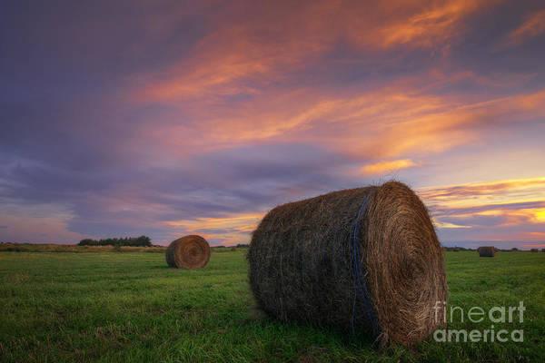 Hay Bale Wall Art - Photograph - Three Bales by Dan Jurak