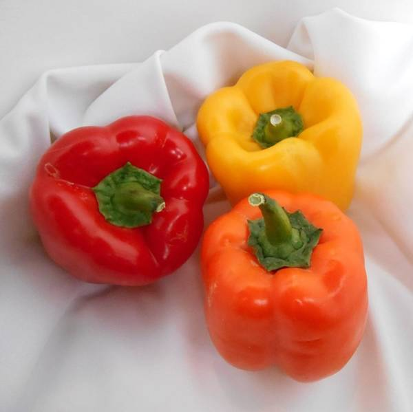 Analogous Color Photograph - Three Bell Peppers Red Orange And Yellow Food Fine Art by Patricia E Sundik