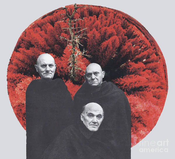 Bald Mixed Media - Three Blind Mice by Elizabeth Hoskinson