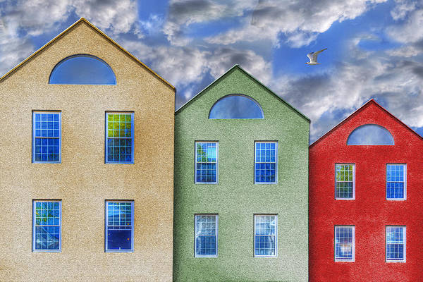 Three Buildings And A Bird Art Print