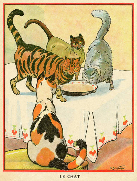 Tabby Drawing - Three Cats (a Siamese, A  Persian by Mary Evans Picture Library