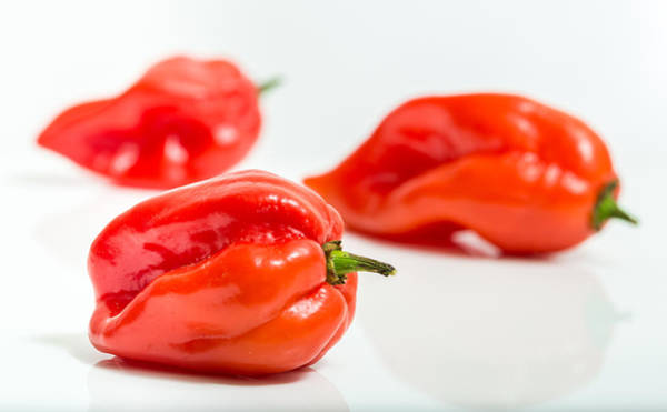 Photograph - Three Chillies by Gary Gillette