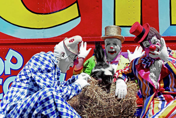 Skunk Photograph - Three Clowns Smell And React To A Skunk by Vintage Images