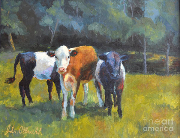 North Carolina Painting - Three Cows Proud by John Albrecht