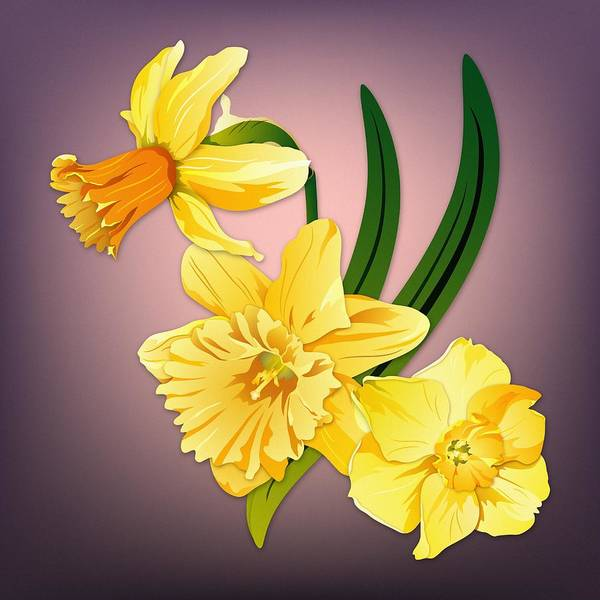 Digital Art - Three Daffodils by MM Anderson