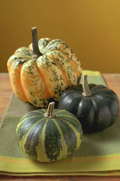 Cucurbits Photograph - Three Different Pumpkins On Cloth by Foodcollection