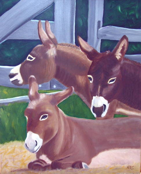 Photograph - Three Donkeys by Natalie Rotman Cote