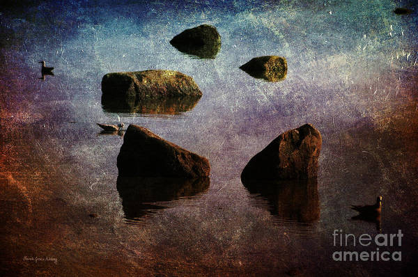 Photograph - Three Gulls by Randi Grace Nilsberg
