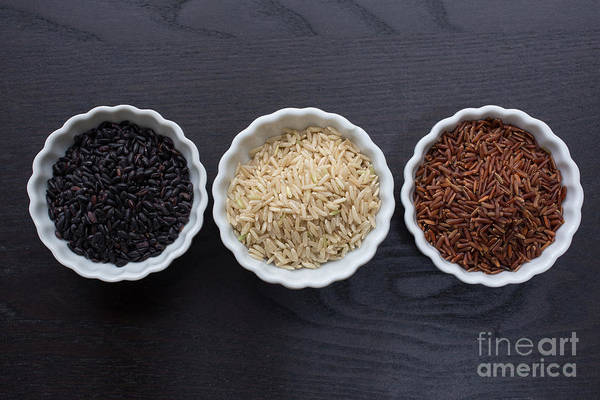 Rice Photograph - Three Kinds Of Rice by Edward Fielding