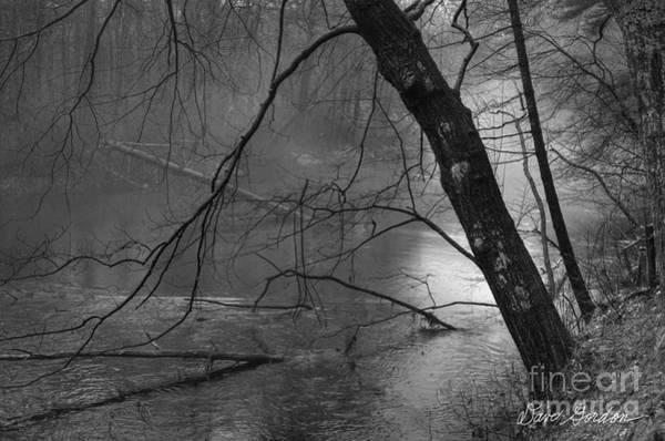 Photograph - Three Mile River by David Gordon