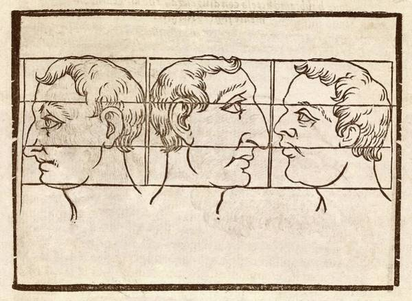 Traits Photograph - Three Nose Types by Middle Temple Library