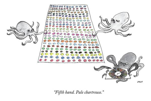 Fish Drawing - Three Octopi Play Twister On A Giant Mat by Edward Steed