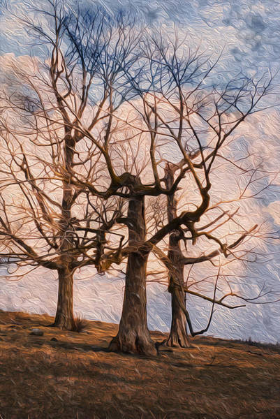 Perennial Painting - Three On The Hill - Color by Jack Zulli