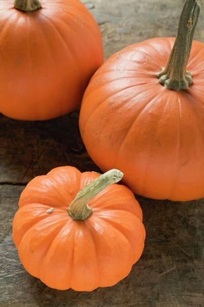 Cucurbit Photograph - Three Orange Pumpkins by Foodcollection