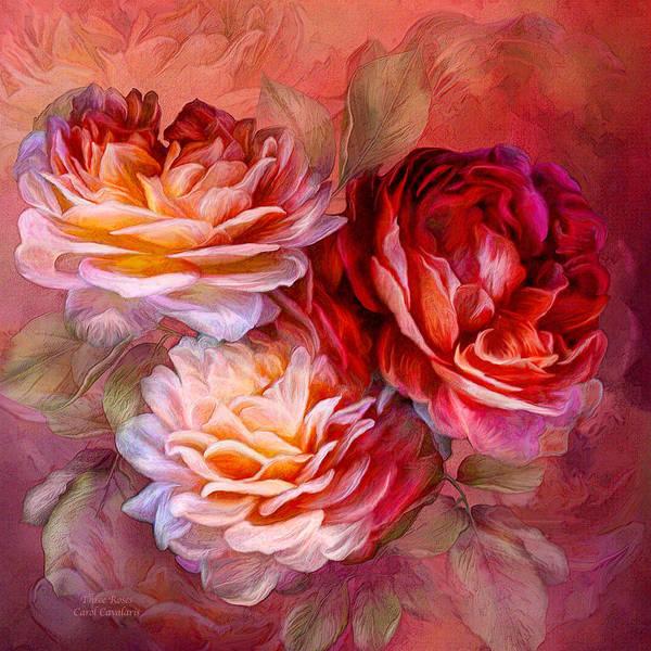 Mixed Media - Three Roses - Red by Carol Cavalaris