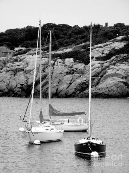 Photograph - Three Sailboats In Black And White by Kristen Fox
