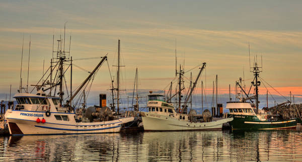 Photograph - Three Seiners by Randy Hall