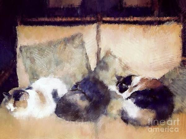 Curl Up Painting - Three Sleeping Cats by Nicola Andrews