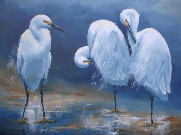 Gulf Shores Alabama Painting - Three Snowy Egrets by Kathleen Tucker
