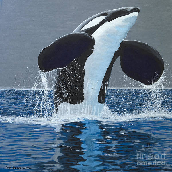Blackfish Painting - Three Strikes You're Free by Robert Timmons