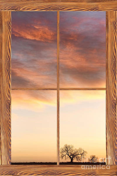 Unframed Wall Art - Photograph - Three Trees Sunrise Barn Wood Picture Window Frame View by James BO Insogna