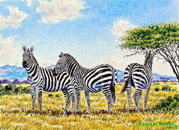 Painting - Three Zebras by Joseph Thiongo
