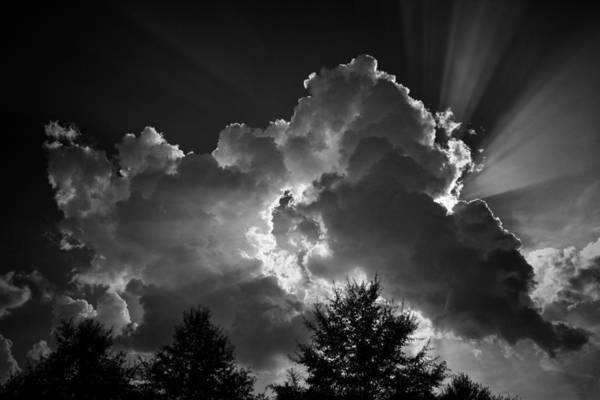 Photograph - Through And Through by Ben Shields